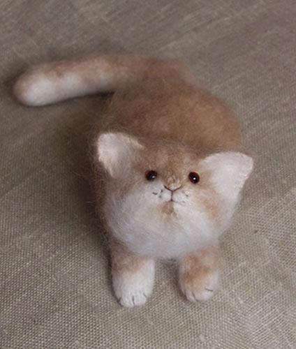 Ducote Blog: Small Cat