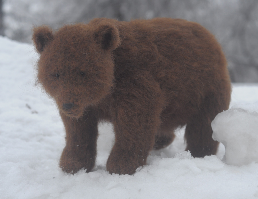 bear in the snow