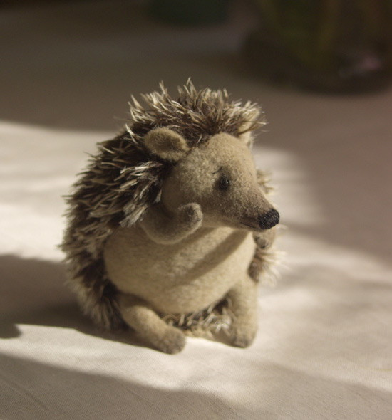 stuffed hedgehog