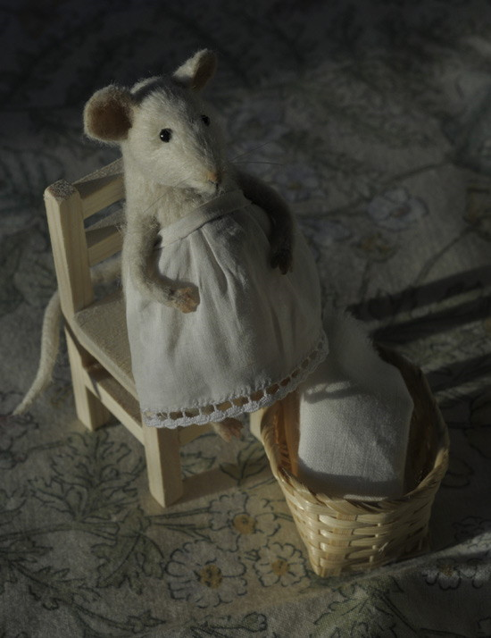 pregnant mouse