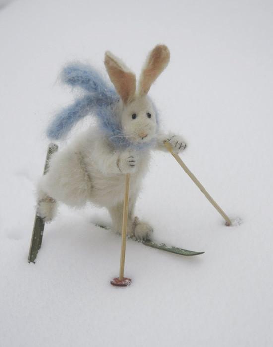 skier rabbit