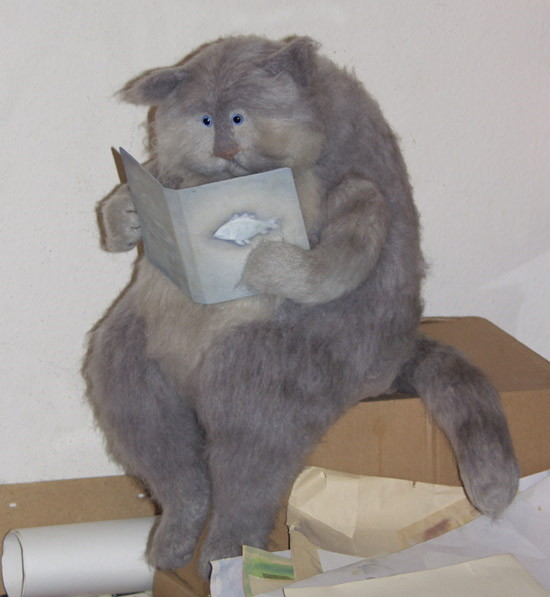 fat grey cat