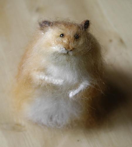 elderly hamster