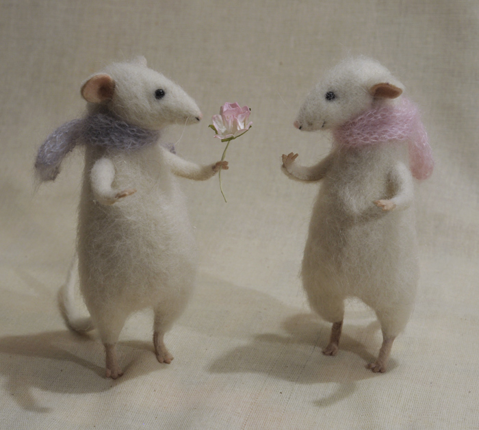 rats with a rose