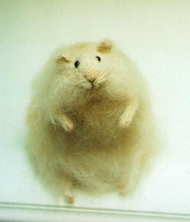 stuffed hamster, yellow