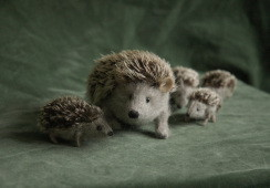 stuffed hedgehog family