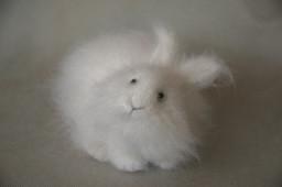 белый пушистый заяц