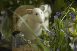 мышки в саду