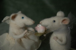 """happy mice couple"""