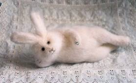 """rabbit at rest"""